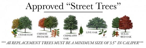 Approved Street Trees